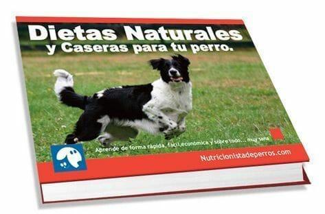 Libro trucos de nutricion canina